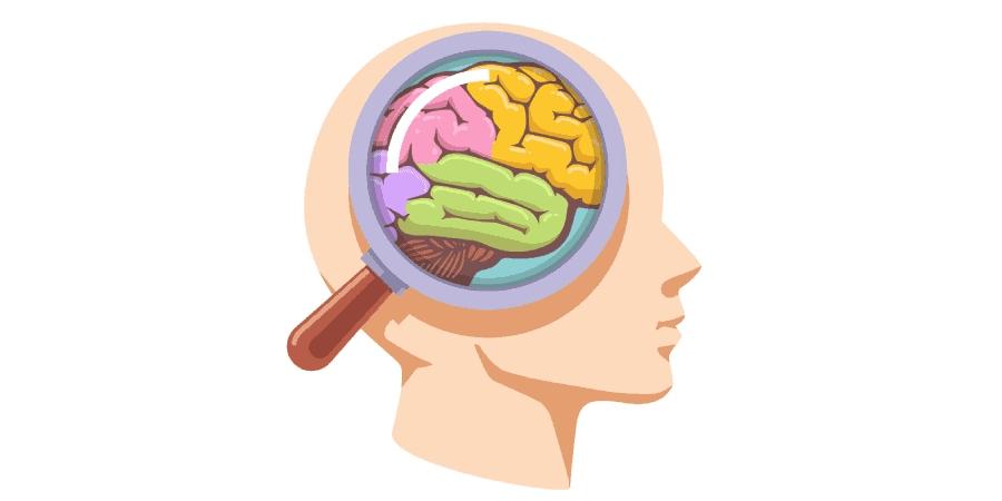 ilustração de cérebro com lupa em cima