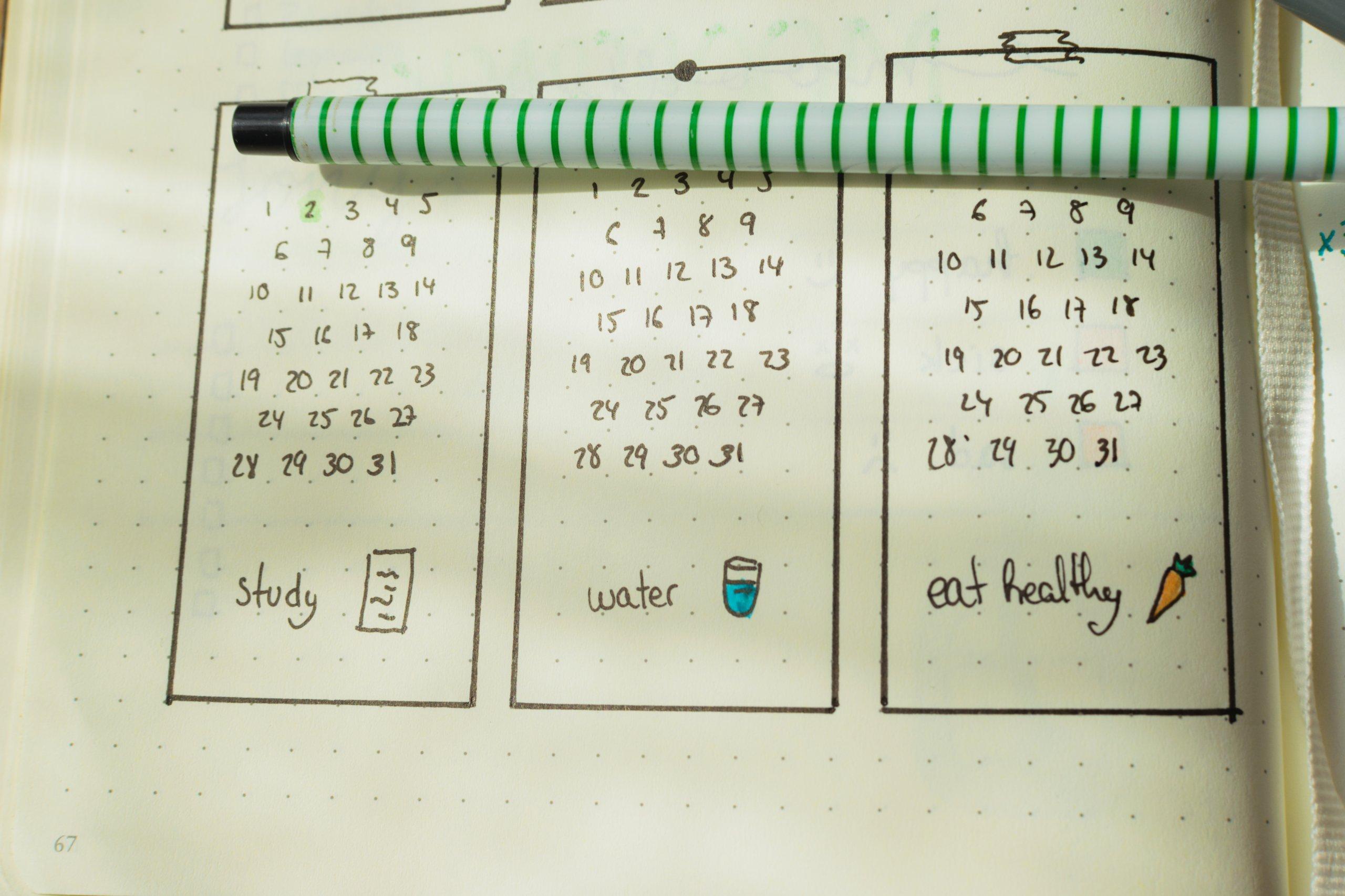 rotina de estudos planner